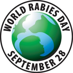 Protect your dog against rabies