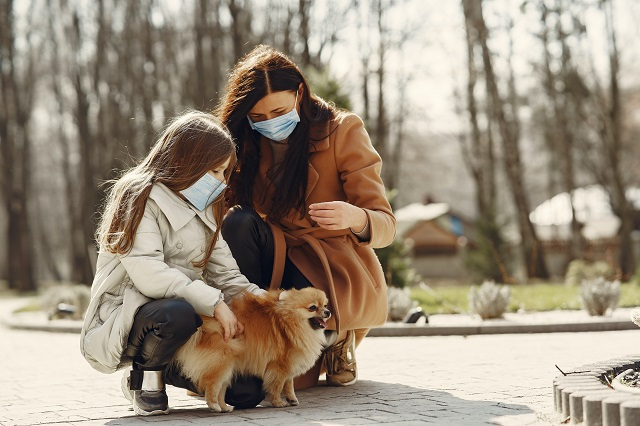Is it safe to travel with your dog during the corona virus